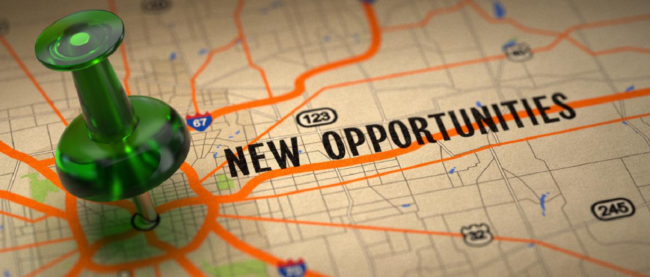 Steering Through The Job Market During Lockdown