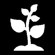 icon-purpose